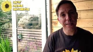 Sunshine TV   11   Winners And New Art Comp