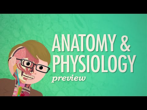 Crash Course Anatomy & Physiology Preview
