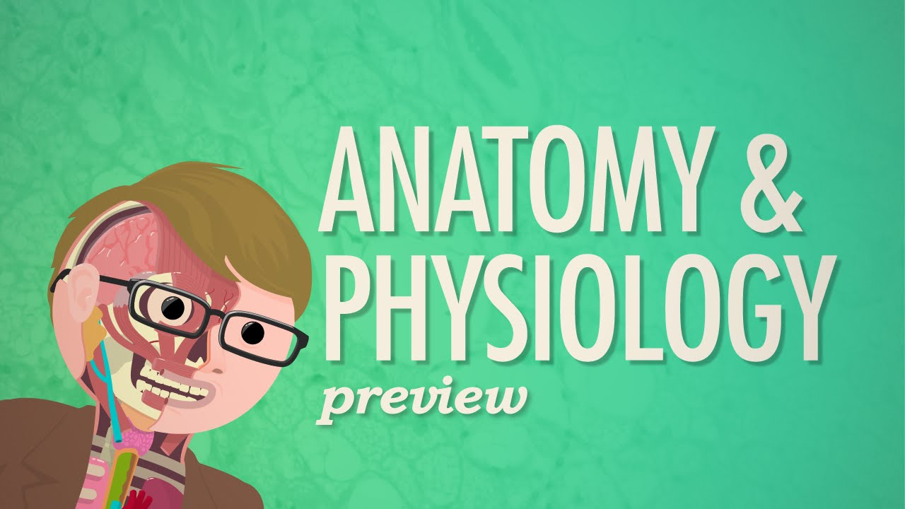 Crash Course Anatomy & Physiology Preview - YouTube