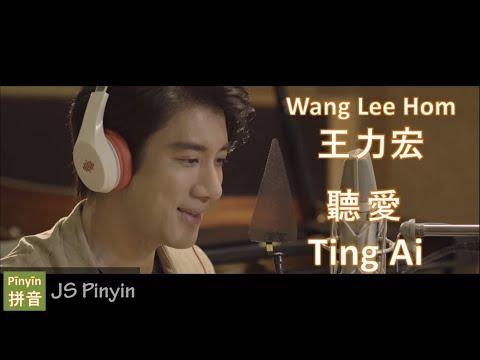 Wang Lee Hom 王力宏 - Ting Ai 聽愛 (Pinyin Lyrics)