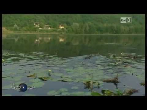 Lago di fimon geo geo padova carp team youtube for Lago padova