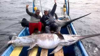 Video Pesca albacora caldera. Saludos a los vilos download MP3, 3GP, MP4, WEBM, AVI, FLV Desember 2017