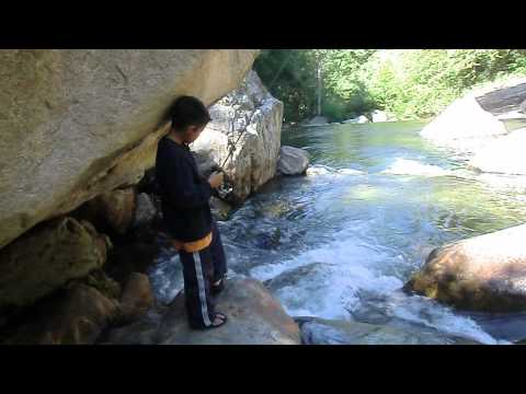 Wishon 2011: Son Fishing For Rainbow Trout