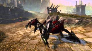 Neverwinter Founders Pack Video