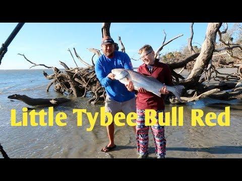 KAYAK, CAMP AND FISH LITTLE TYBEE ISLAND GA