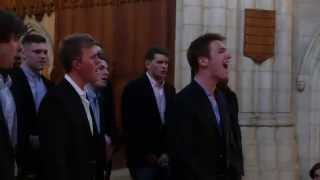 All I Want (A Cappella) - The Trinity College Accidentals