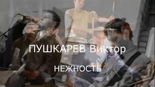 Смотреть клип Виктор ПУШКАРЕВ - Нежность онлайн