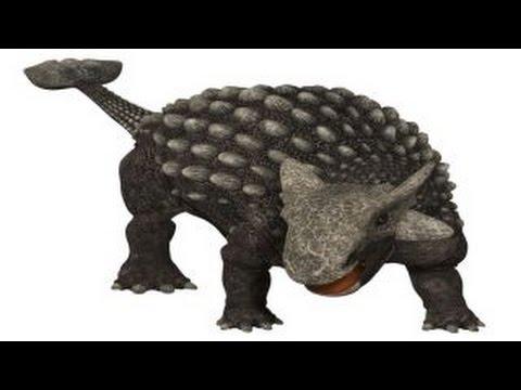 Ankylosaurus | Enciclopedia sobre Dinosaurios