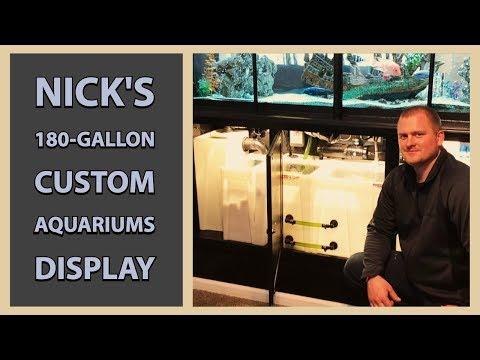 Nick's 180-gallon Custom Aquariums Display