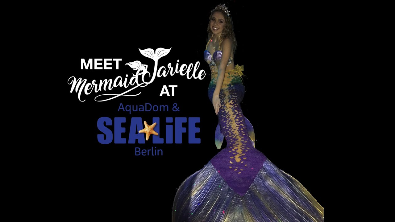 Meet a real mermaid at SeaLife Aquarium in Berlin | Mermaid Tarielle