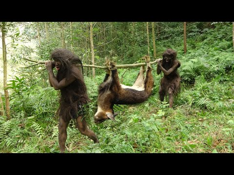 Primitive life - Forest People - Animal trapping skills of forest people