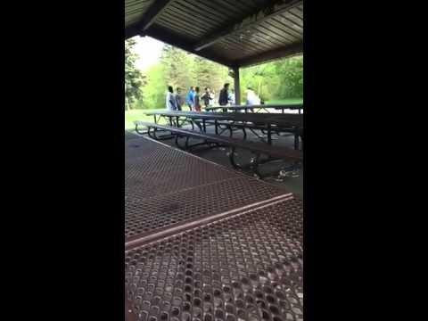 Cedarbrae park fight