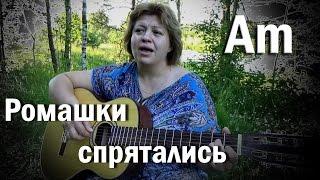 ромашки спрятались, Зачем вы девочки красивых любите..., красиво петь под  гитару, кавер,