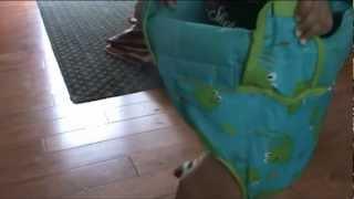 Johnny Jump Up - Doorway Baby Jumper
