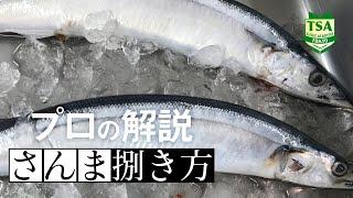 秋刀魚の捌き方part1(東京すしアカデミー講師の解説付)  How to fillet pacific saury