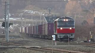 2019年初撮影 貨物列車DF200レッドベアー牽引走行シーン 室蘭本線