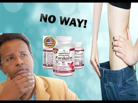 Does Forskolin Work For Weight Loss? | Pharmacist Review