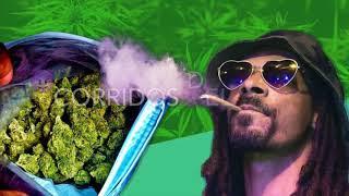 Corridos para gente marihuana(puros corridos verdes)100% 420