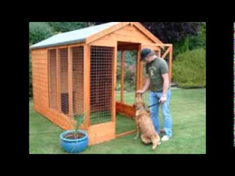 Cheap Dog Kennels And Runs Youtube