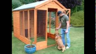 Cheap Dog Kennels And Runs