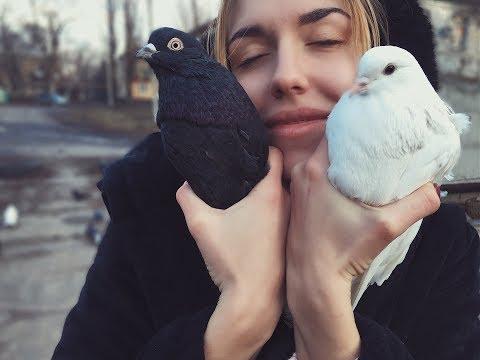 Голуби Гапонова Юрия -Новогодний Выпуск! +380 (95) 368 04 06, г.Селидово