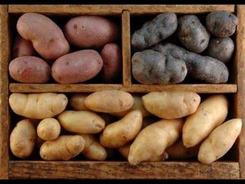 полезное картошка