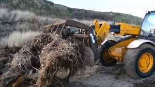 Scratby beach clear up operation.