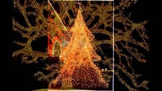 видео Новогодняя LED продукция: светодиодные гирлянды, лампы, деревья, украшения и игрушки в СПб
