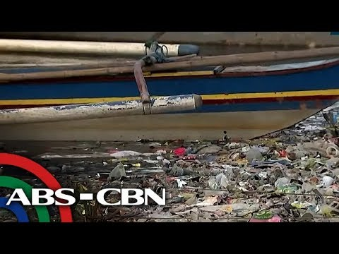 Business Nightly: Should Manila Bay reclamation projects be stopped?