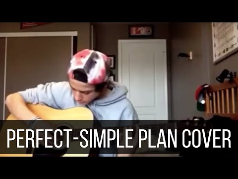 Perfect Simple Plan Cover Youtube