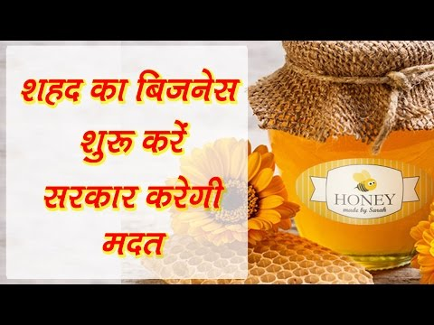 Start Honey business in India, govt. will help you  || शहद का बिजनेस शुरू करें सरकार करेगी मदद