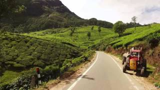 Stock Footage of Tea plantations Munnar, Kerala, India