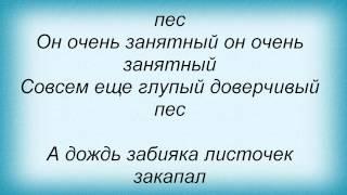 Слова песни Детские песни - Пропала собака