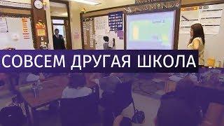 Как устроена система школьного образования в разных странах мира