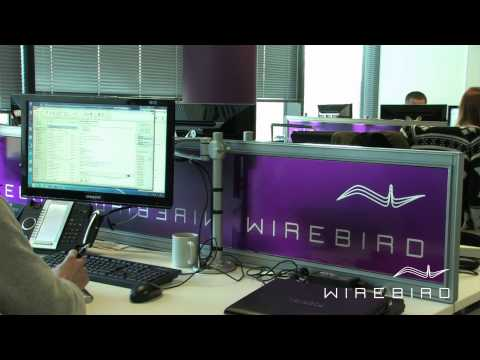 Wirebird promo 07 HD