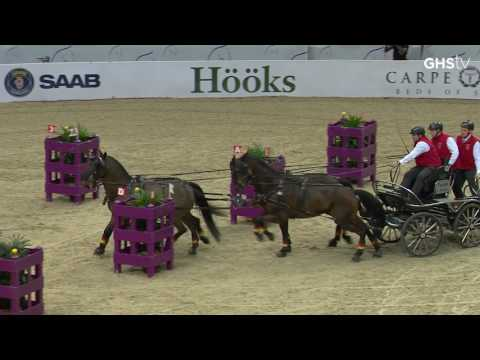 FEI World Cup Driving Lördag