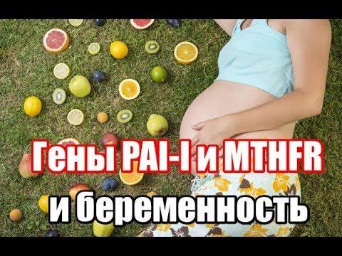 Ген PAI 1 - мутация 4G/5G. MTHFR - мутация гена C677T  C/C T/T. Анализы и лечение.