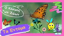 * Ο Κόσμος Των ζώων_Τα Έντομα (The Insects)