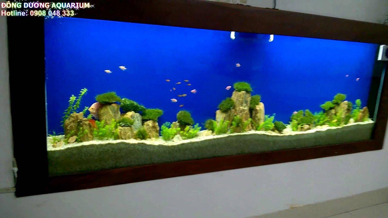 Hồ thủy sinh, bể cá thủy sinh quấn rêu, đá quấn rêu, rêu thủy sinh