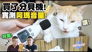 【黃阿瑪的後宮生活】買了分貝機!實測阿瑪音量! thumbnail