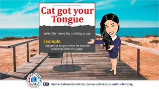 Cat got your Tongue (Universal Sound Academy)