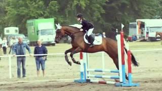 *****) moja ( ) pasja () konie(*****