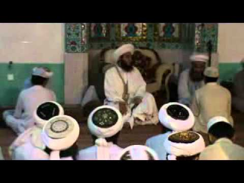 saifi ( PIR SYED AAMIR HUSSAIN SHAH GILLANI AL-SAI...