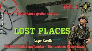 ★ Lost Places (Teil 5│Der Karl Dönitz Hauptbunker- Hier wohnen Fledermäuse│Lager Koralle)