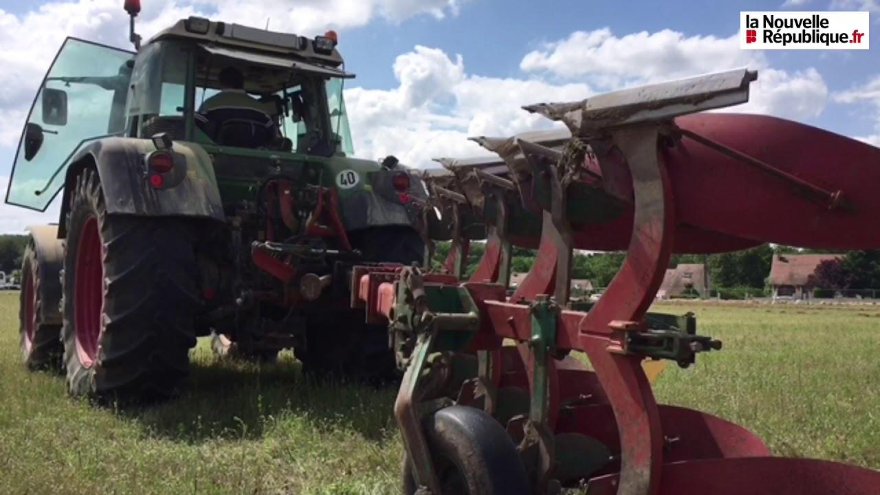 Calendrier Comice Agricole Sarthe 2019.Video Comice Agricole Le Concours De Labours Comment Ca Marche