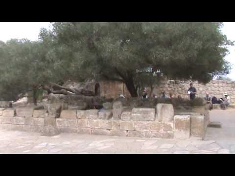 Mount Tabor - Church of Transfiguration Latin Catholic - travel the Holy Land