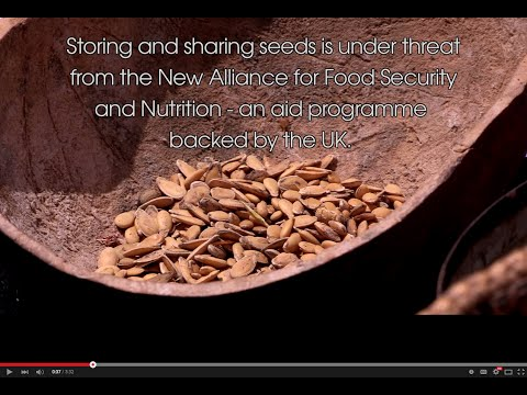 Whoever controls seeds, controls the food system