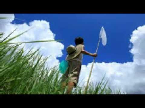 少年時代/井上陽水 カラオケ 歌唱 マロン