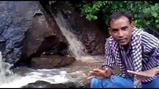Gadchiroli forest Nature.mp4