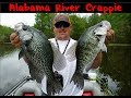 Alabama River Crappie Fishing